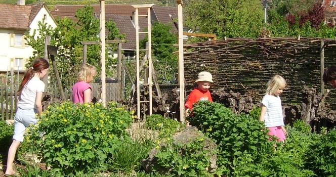 Duft und Kräutergarten