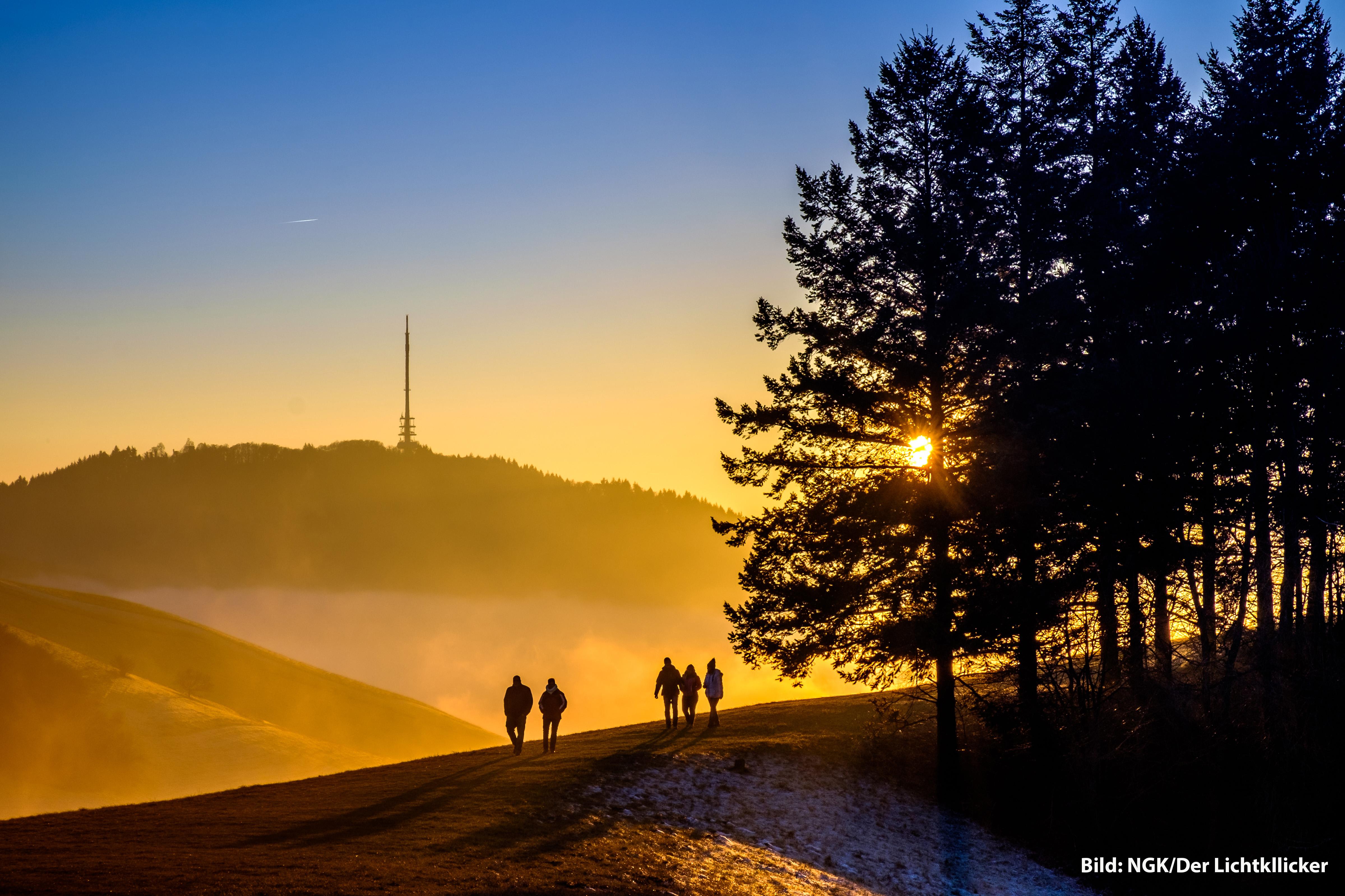 Der_Lichtklicker-Kaiserstuhlpfad.jpg